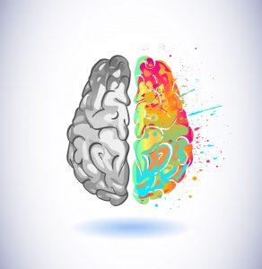 lewa półkula mózgu