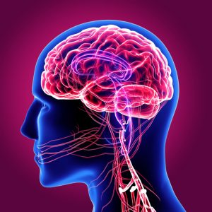 wylew krwi do mózgu
